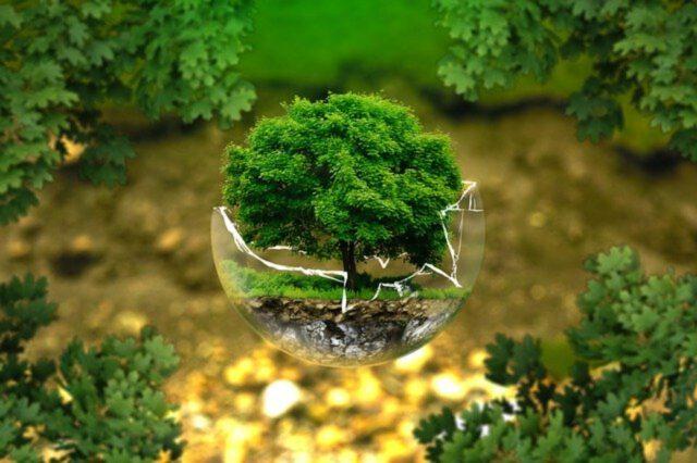 Czym jest dom ekologiczny?