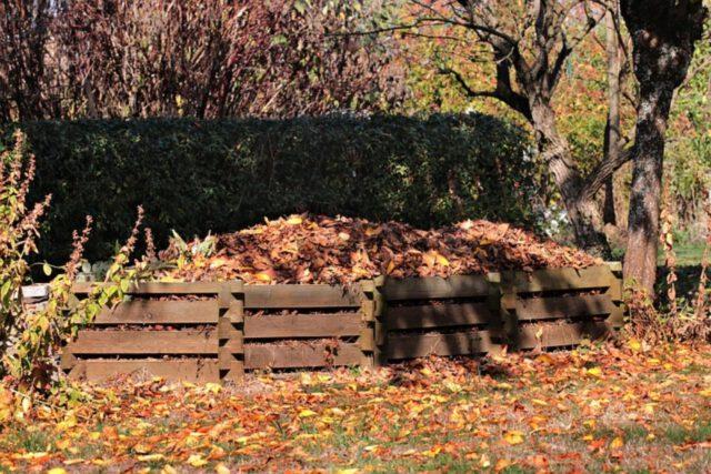 Kompost w ogrodzie w aspekcie praktycznym