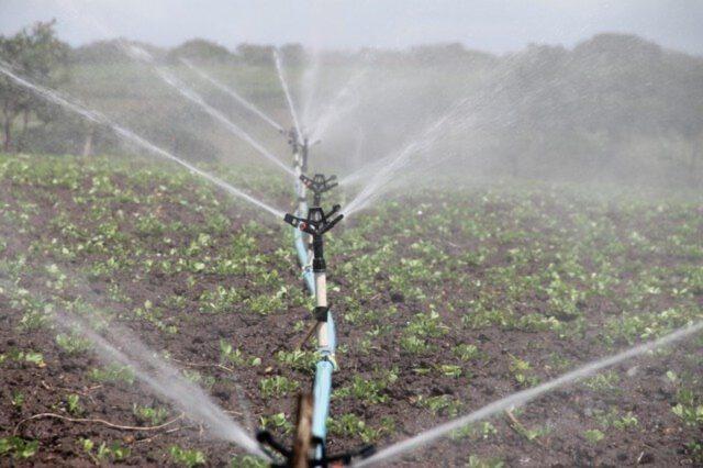 System nawadniania ogrodów