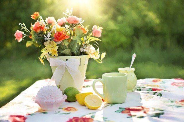Załóż swój wymarzony ogród