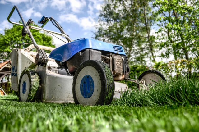 Piękny trawnik dla każdego – jakie urządzenia okażą się niezbędne?
